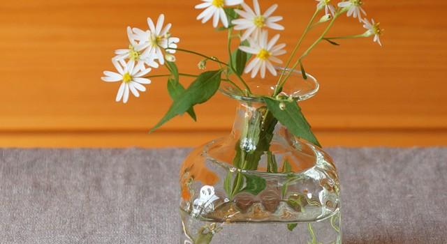 春はまだだから花を飾りましょう